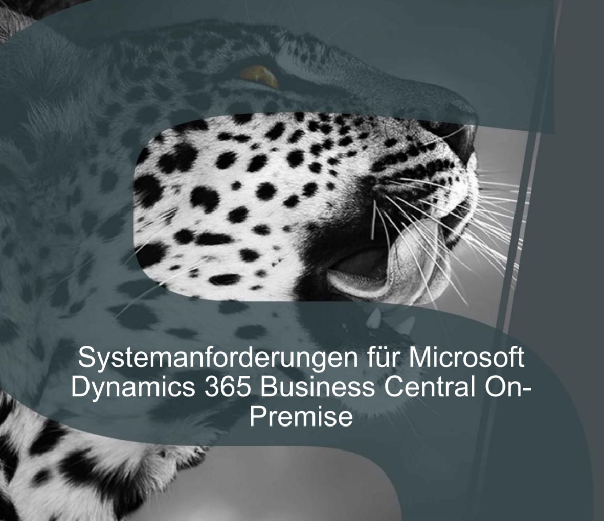 dynamics 365 business central on-prem requirements
